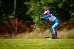 grass_ski-126