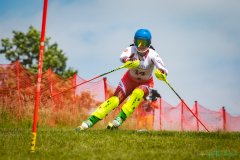 grass_ski-18