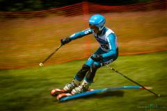 grass_ski-59