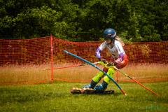 grass_ski-6