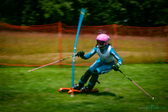 grass_ski-72
