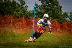 grass_ski-90