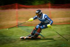 grass_ski-96